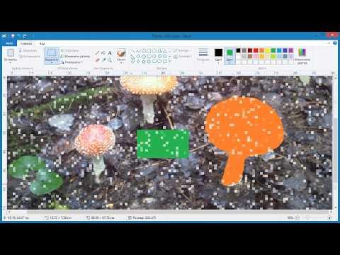 Как в Paint залить цветом выделенную область