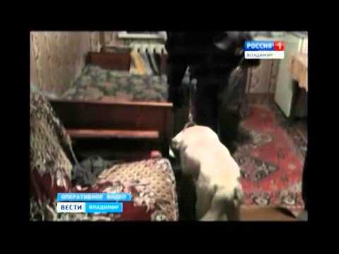 Выходец из Средней Азии торговал героином в Покрове