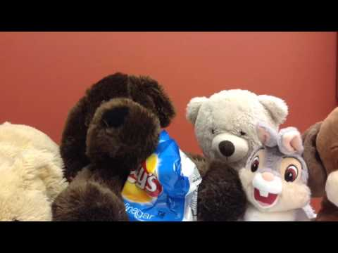 Anna's Personalized Stuffed Animal Sleepover Video