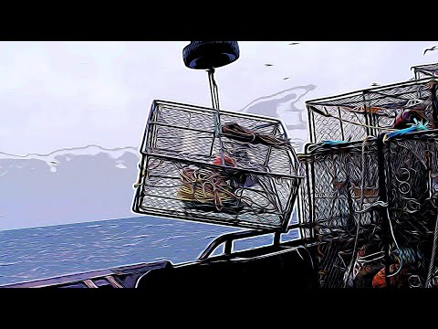 Deadliest catch POV Bering sea crab fishing