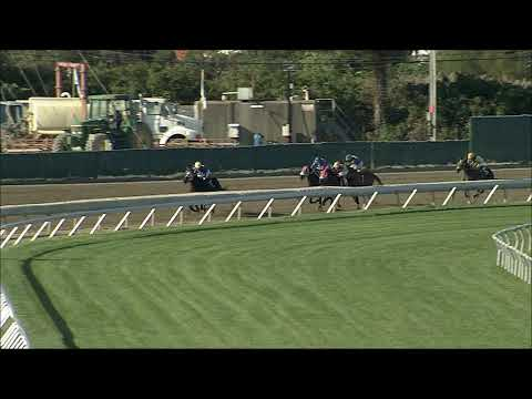 video thumbnail for MONMOUTH PARK 10-3-20 RACE 8
