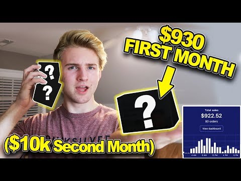 My FIRST $930 PER MONTH Shopify Store (Product REVEAL)