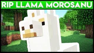 Minecraft ca Golanii : RIP LLama Morosanu !