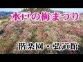【告知】第122回水戸の梅まつり の動画、YouTube動画。