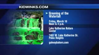 Kidwinks.com highlights St. Patrick's day fun for Chicago kids and parents on the WGN-TV Midday News