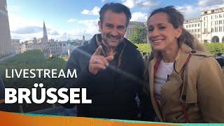 Live in Brüssel mit Tamina und Uwe