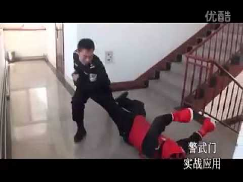 Chinese Police self-defence
