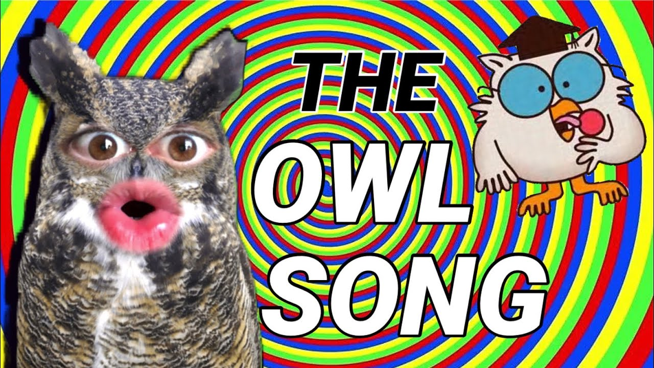 The Owl Song - Mr. Grande