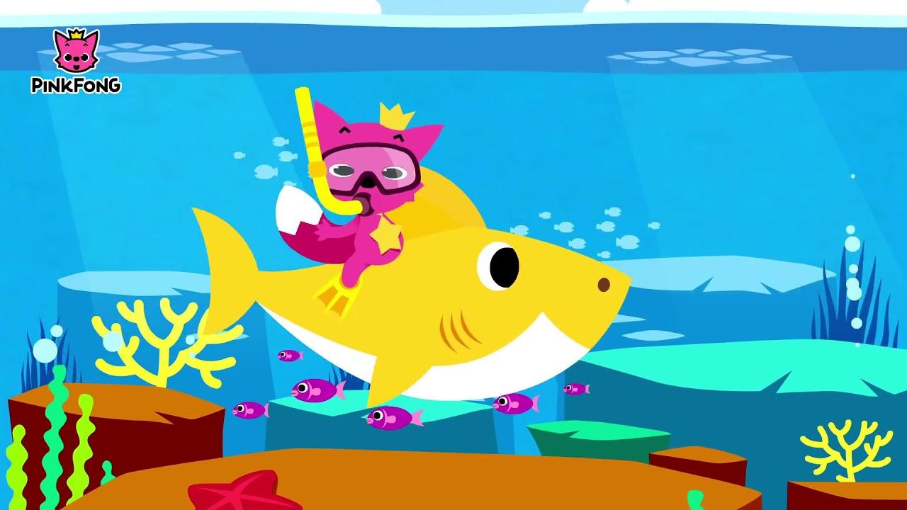 BABY SHARK   Brasil Videoo🥳 - YouTube