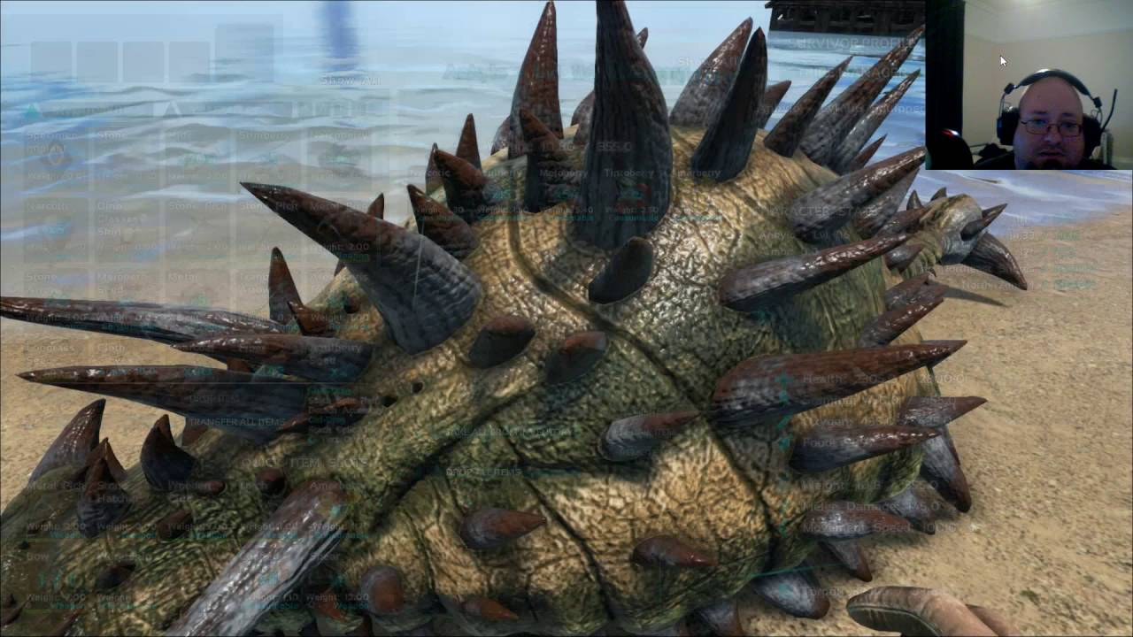 ark survival evolved how to make a houseboat