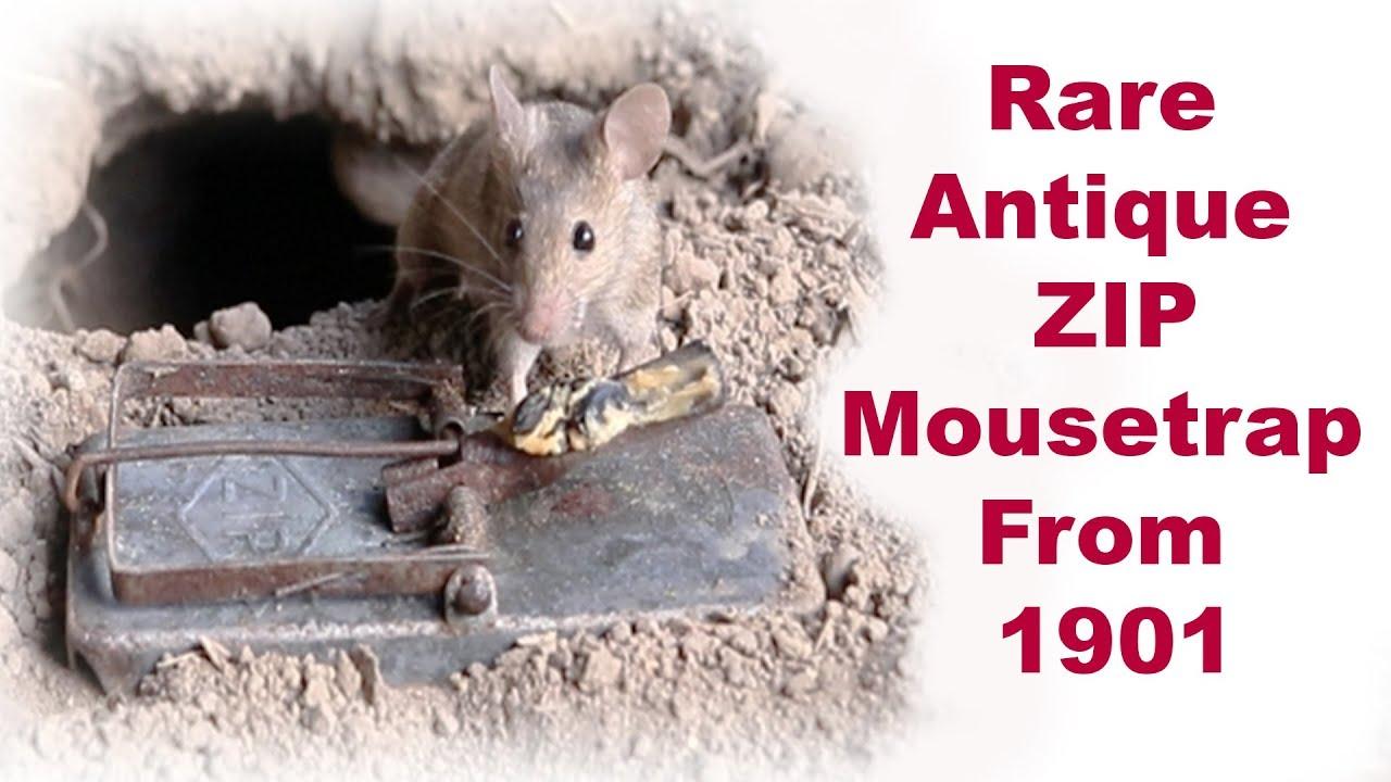 rare-antique-zip-mousetrap-from-1901-mousetrap-monday