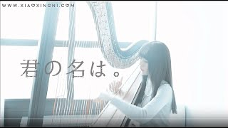 Yourname OST_君の名は_火花_スパークル (harp cover)