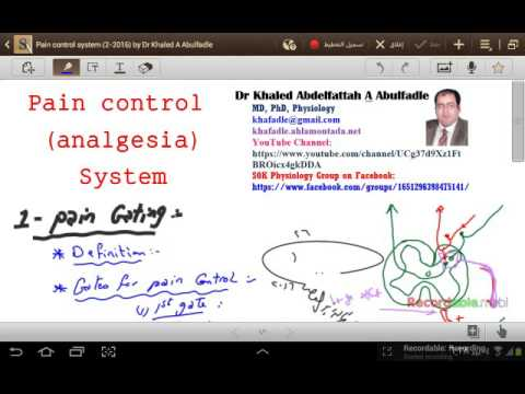 Pain control (Analgesia) system (2-2016) by Dr Khaled A Abulfadle
