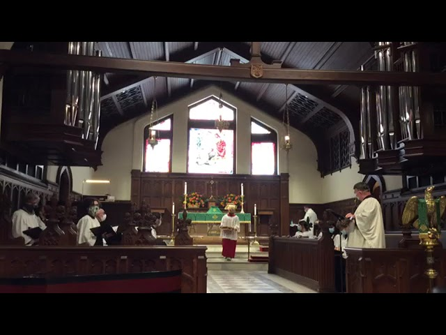 The Eleventh Sunday after Pentecost August 8, 2021