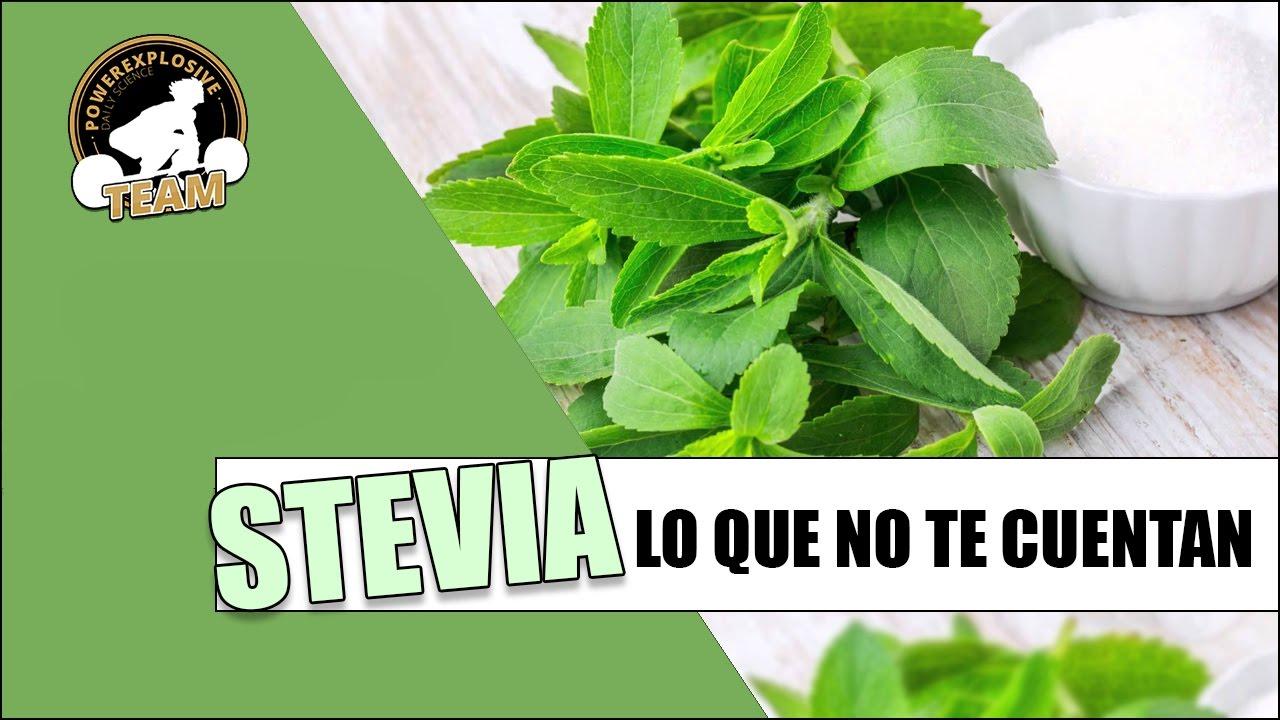 LO QUE NO TE CUENTAN DE LA STEVIA - YouTube
