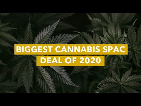 Biggest Cannabis SPAC