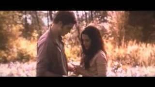 Twilight - Happy End