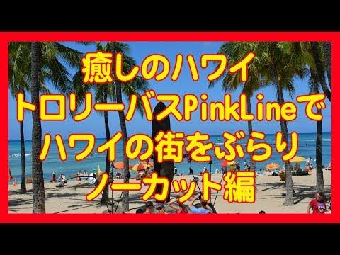 癒しのハワイ トロリーバスPinkLineでワイキキの街をぶらり