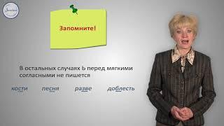 Русский язык 10 класс  Разделительные Ъ и Ь