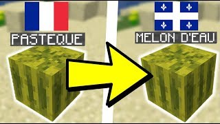 MINECRAFT FRANCAIS VS QUEBECOIS