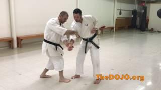 Saifa Kata Bunkai/Applications - Goju Ryu Karate