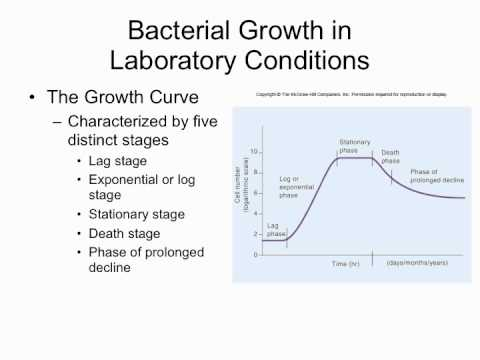 bacterial growth hd