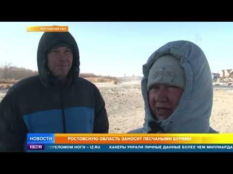 Жители Ростова-на-Дону ищут сокровища на дне обмелевшей реки