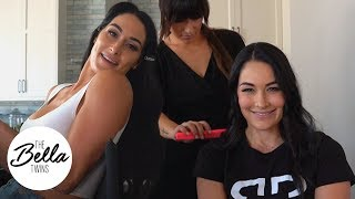 SUMMER UPDATE from Nikki and Brie!