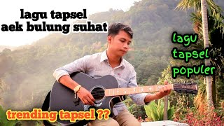Download Aek bulung suhat //lagu tapsel // cover by : taufiq nst /