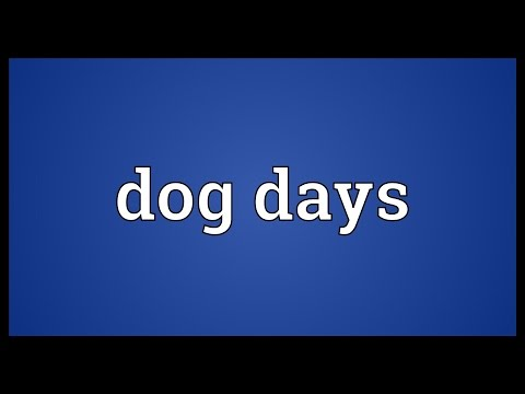 Dog days Meaning