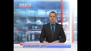 Ярмарка «Дары осени - 2018» подходит к концу