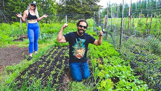 Can you grow enough food from your garden? | Homesteading for beginners | Life of a Homesteader