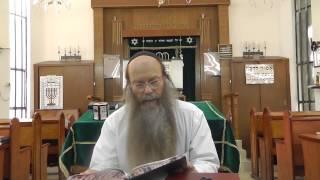 הרב דוד דודקביץ' – פרשת במדבר