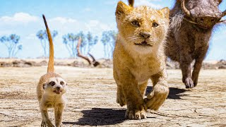 Hakuna Matata Song Scene - THE LION KING (2019) Movie Clip