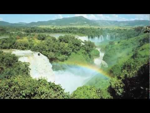 Biodiversity in Latin America
