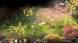 Pillars of Eternity - Path of the Damned battle