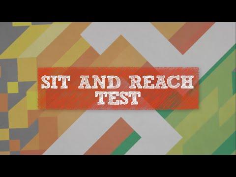 Sit & Reach Test (Flexibility)