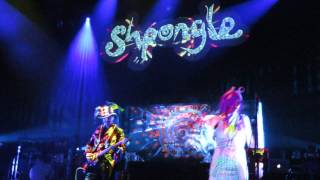 shpongle -I Am You Live In Japan 2014.