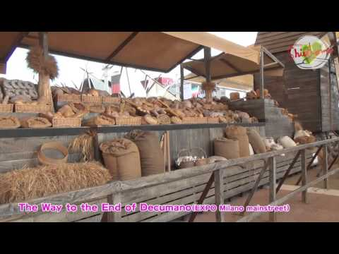 The Way to the End of Decumano (Documentary film of EXPO Milano 2015)