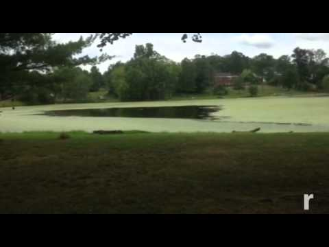 VIDEO: Ridgebury Lake starting to clear up