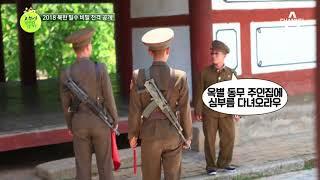 꿀잼보장! 이만갑에서만 공개되는 북한 밀수의 1급(?) 비밀은?! thumbnail