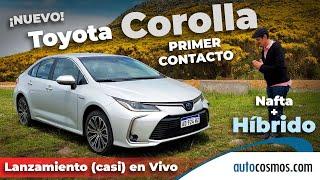 Toyota Corolla híbrido y nafta 2020 Lanzamiento en Argentina   Autocosmos