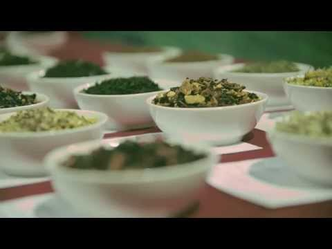Experience Everything Tea at World Tea Expo 2015