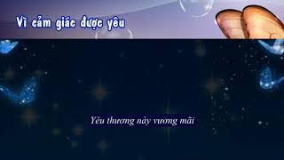 Karaoke vietsub: Vũ Điệp ( Cánh bướm trong đêm ) nhạc Hoa lời Việt
