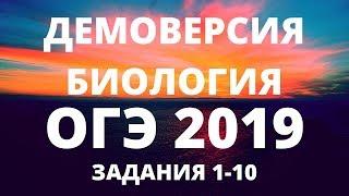 ОГЭ 2019 по биологии Демоверсия РОХЛОВа РАЗБОР заданий 1-10