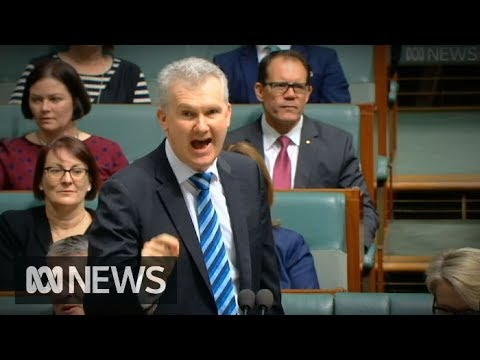 Tony Burke Rips Into Liberal Party Ahead Of Adjournment