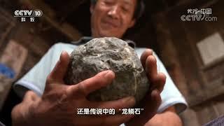 《地理·中国》 20191126 奇山趣石·龙鳞奇石| CCTV科教