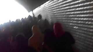Bac lph 2013 (jolie vue - kouba ) la marche à tunnel D