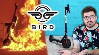 The War on Bird Scooters