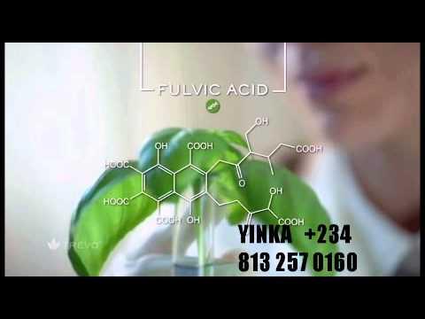 Trevo Drink Health Benefits